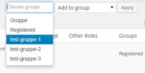 WordPress Benutzer einer Gruppe zuweisen - Gruppe über Drop-Down Menue auswählen