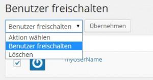 WordPress Plugin Confirm User Registration, Bulk Action Benutzer freischalten