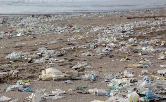 umweltverschmutzung durch plastikmuell vermeidung recycling