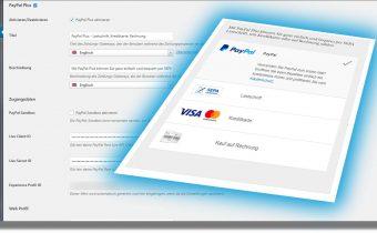 kauf auf rechnung mit paypayl plus in den online shop integrieren