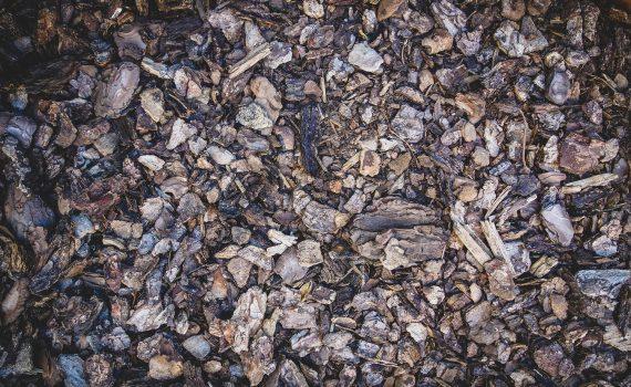 Rindenmulch im Herbst als Winterschutz Frostschutz für Garten Grüanlagen Parks. Reloga Holz- und Kompostprodukte