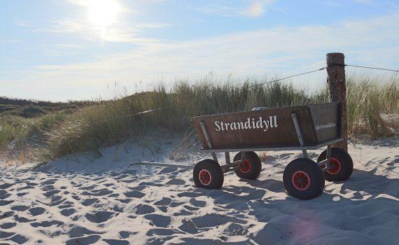 Vatertag mit Bollerwagen am Nordsee Strand von St. Peter Ording
